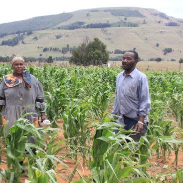 Broad-based economic empowerment